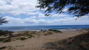 Hawaiian beach. Kehei maui hawaii Stock Photography