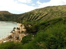 Hawaiian Beach. Midday tour view of a hawaiian beach stock images