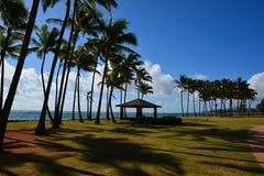 Hawaiian Beach. Wonderful Hawaiian Beach, Kauai, Hawaii royalty free stock images