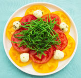 Hawaiian Caprese Salad Stock Photo