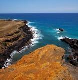 Hawaiian coast Royalty Free Stock Photos