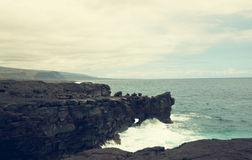 Hawaiian coast Royalty Free Stock Images
