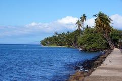 Hawaiian Coast, USA Royalty Free Stock Photos