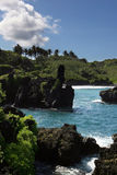 Hawaiian coastal scenery. Hawaiian coastal scene in the daytime Stock Image