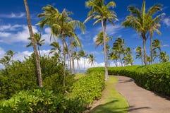 Hawaiian Coastal Trail Royalty Free Stock Photo