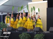 Hawaiian Dance Troupe Stock Photos