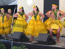 Hawaiian Dance Troupe Performance Royalty Free Stock Photography