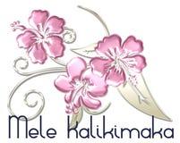 Hawaiian de la Feliz Navidad de Mele Kalikimaka Imágenes de archivo libres de regalías