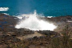 hawaiian della spiaggia Fotografia Stock Libera da Diritti