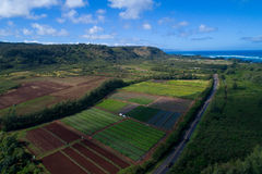 Hawaiian farmland Oahu Stock Photo