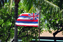 Hawaiian flag Stock Images
