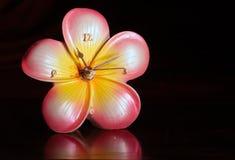 Hawaiian flower clock Royalty Free Stock Photo