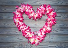 Hawaiian garland of flowers on a blue wooden background. Love. romance. tourism. romantic trip royalty free stock photo