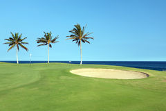 Hawaiian Golf Course Royalty Free Stock Photo