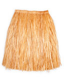 Hawaiian grass skirt Royalty Free Stock Image