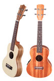 Hawaiian guitar Stock Image