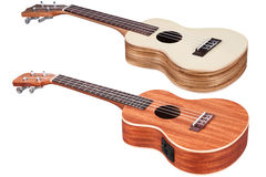 Hawaiian guitars Stock Photography