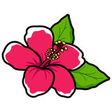 Hawaiian hibiscus flower Stock Photography