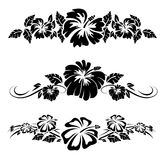 Hawaiian Hibiscus flowers Royalty Free Stock Images