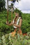 Hawaiian hula Royalty Free Stock Photography
