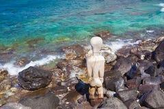 Hawaiian idol Stock Photo