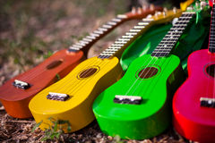 Hawaiian instrument ukulele Stock Images