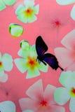 Hawaiian jungle print made of textured cotton cloth Stock Photo