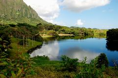 Hawaiian lake. A small lake winding its way through a remote part of oahu hawaii Stock Photography