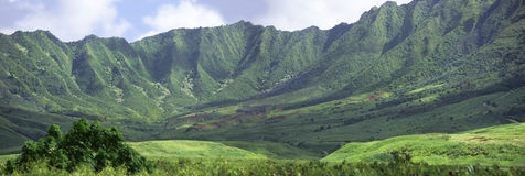 Hawaiian landscape - mountains Stock Image