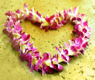 Hawaiian lei Royalty Free Stock Photo