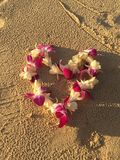 Hawaiian lei of orchids flowers on sand under sunset sun Stock Photos