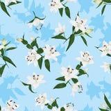 Hawaiian lilies blue seamless print Stock Photos