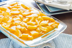 Hawaiian Mango Jello Cheesecake Royalty Free Stock Photos