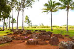 Hawaiian Native Birthing Stones. These smooth stones are where Hawaiian royalty kings and queens have been born for centuries. This historical native site is stock photos