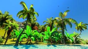 Hawaiian paradise Royalty Free Stock Photo