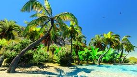 Hawaiian paradise Royalty Free Stock Photography