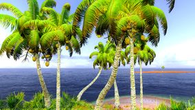 Hawaiian paradise Royalty Free Stock Photos