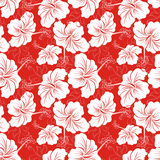 Hawaiian patterns. Seamless hibiscus flower background . Hawaiian patterns Royalty Free Stock Image