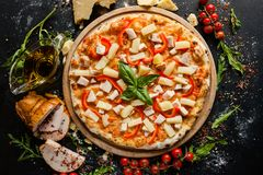Hawaiian pizza gourmet meal special recipe Stock Images