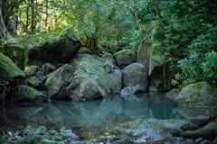 Hawaiian pool in the jungle royalty free stock image