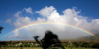 Hawaiian rainbow Stock Photos