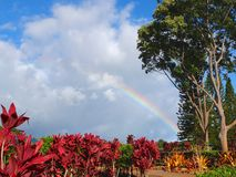 Hawaiian Rainbow Royalty Free Stock Photography