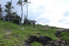 Hawaiian rest stop Stock Image