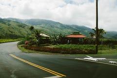 Hawaiian Roadside coconuts Royalty Free Stock Image
