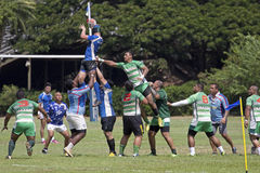 Hawaiian Rugby Stock Photos