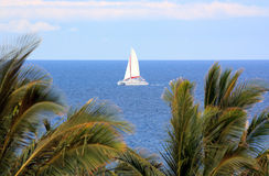 Hawaiian Sails Royalty Free Stock Images