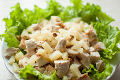 Hawaiian salad in the plate. Chopped ruddy chicken breasts with leaf salad, pieces of pineapple and crushed walnut. Stock Image