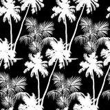 Hawaiian seamless pattern. Seamless monochrome tropical pattern of palm trees. Black and white background for a Hawaiian shirt Stock Images