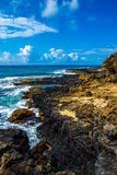 Hawaiian Shoreline-vertical Royalty Free Stock Photo