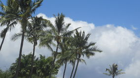 Hawaiian skies Royalty Free Stock Photography